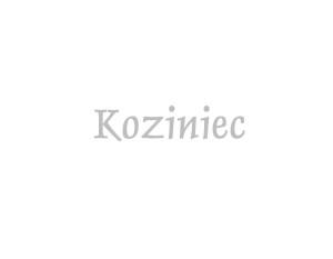 Koziniec | Sery Łomnickie